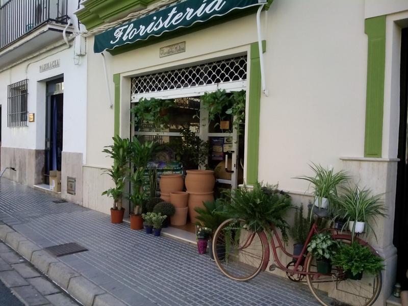 biciAnita2